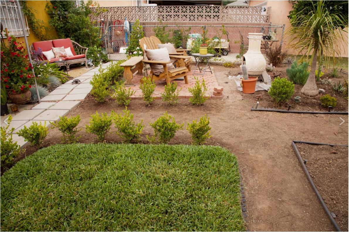 Anita McNair's drought tolerant backyard